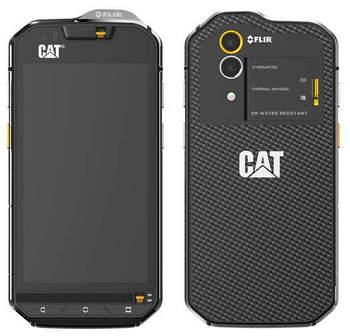 CAT_s60.jpg